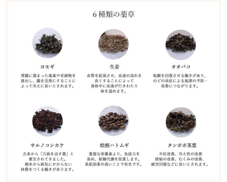 6種類の薬草