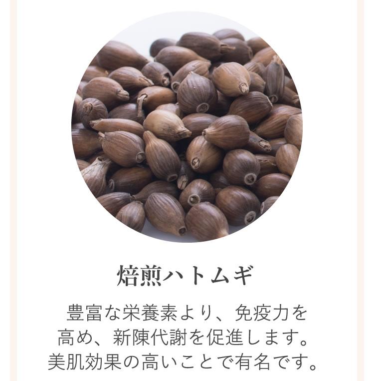 6種類の薬草5