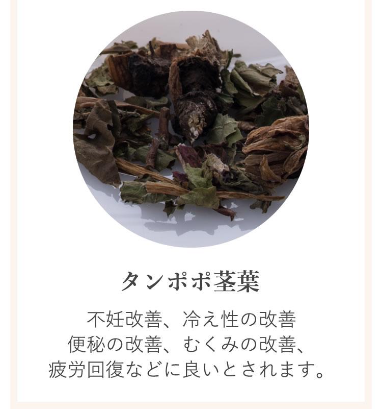 6種類の薬草6